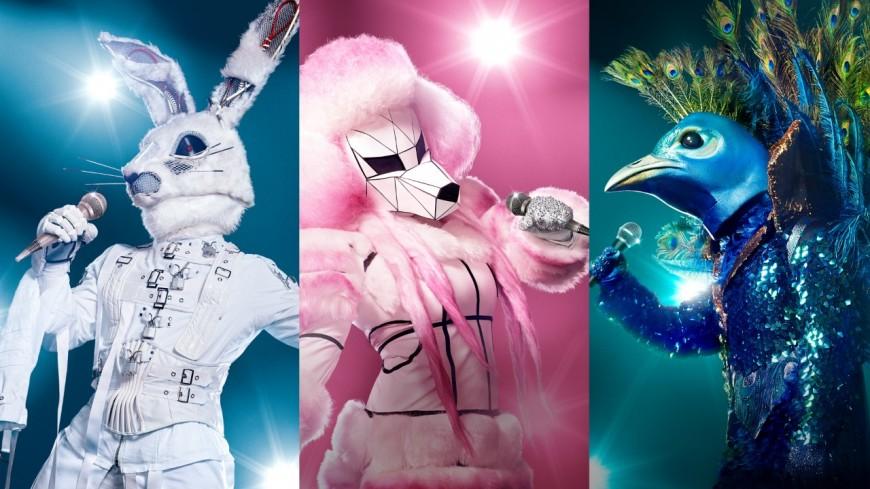 """""""The Masked Singer"""" : La nouvelle émission de TF1"""