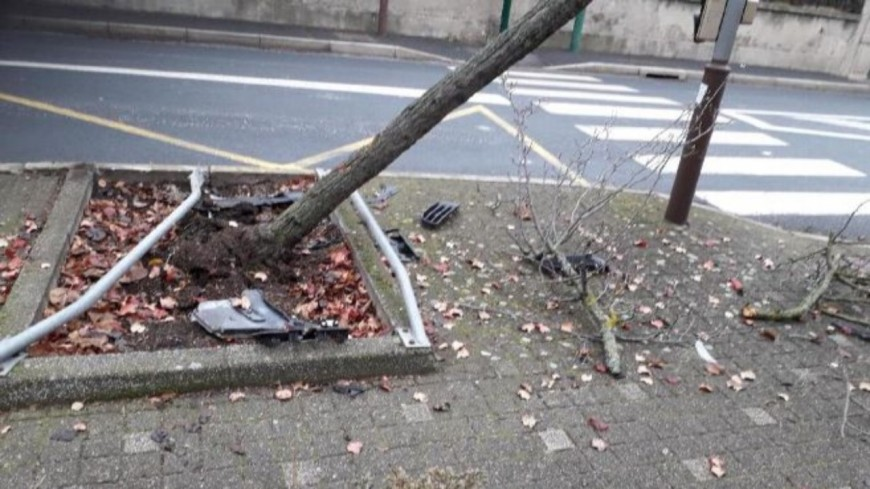 Alcoolisé : il tire des coups de feu et finit dans un arbre