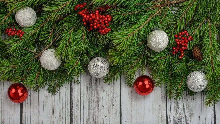 Sapin de Noël à Jaude