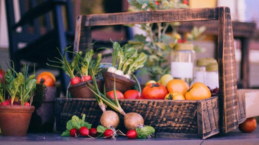 Clermont-Ferrand : un panier de fruits et légumes à 5 euros pour les étudiants