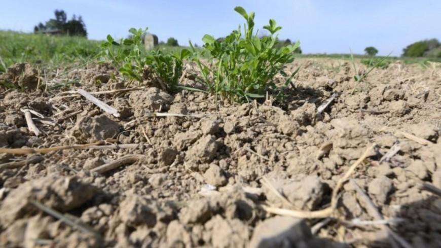 La sécheresse s'installe dans le département de la Creuse