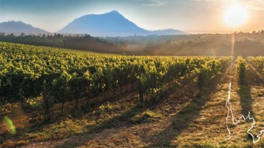31e édition du concours départemental des vins organisé par le syndicat AOC Côtes d'Auvergne