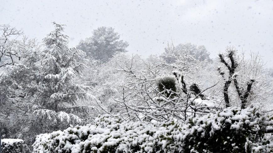 Clermont-Ferrand : vague de froid