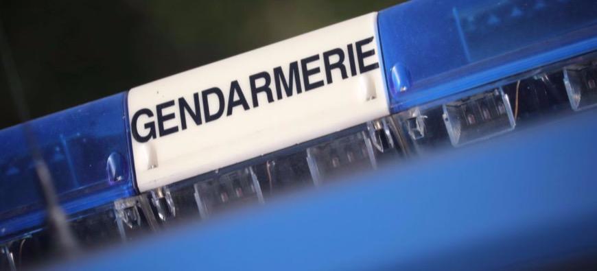 Puy-de-Dôme : 500 pieds de cannabis trouvés par les policiers